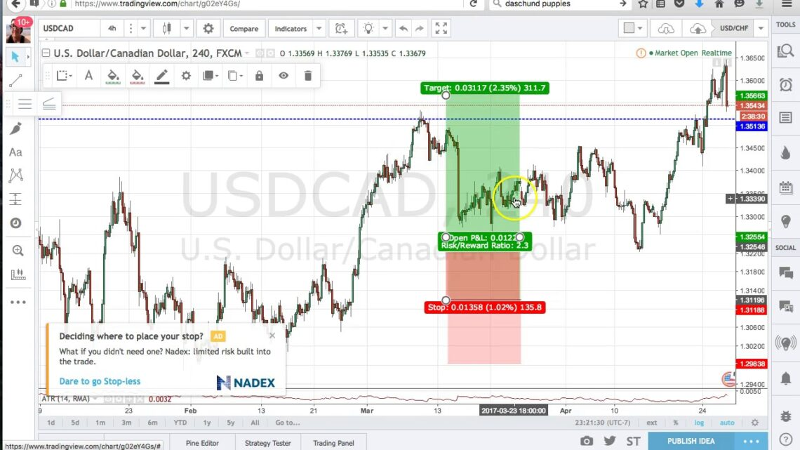 The best Side of Forex Trading Charts Software